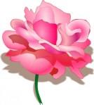 rose_cli