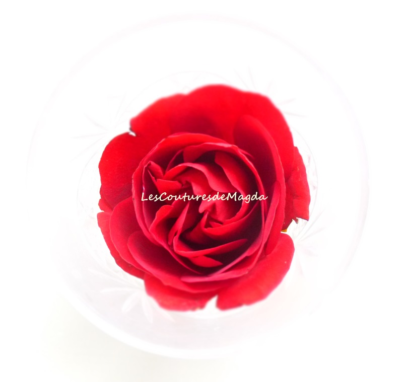 lescouturesdemagda-rose