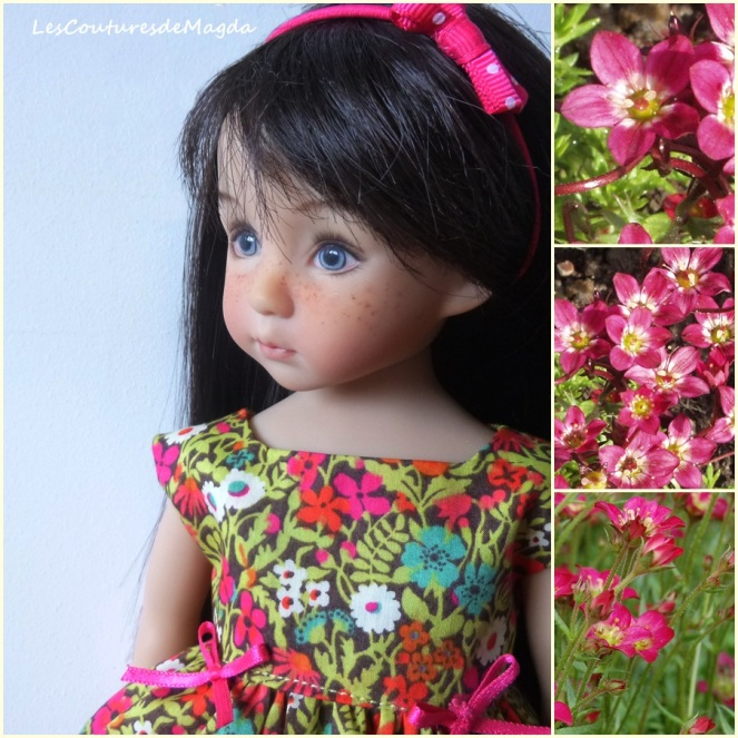 saxifraga-robe-LD01