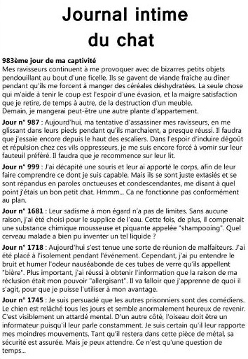 journal-intime-chat